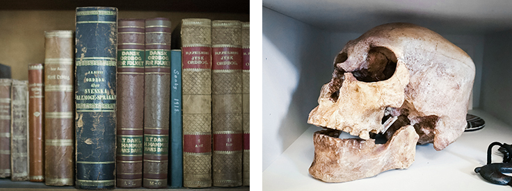 Eske artifacts book skull