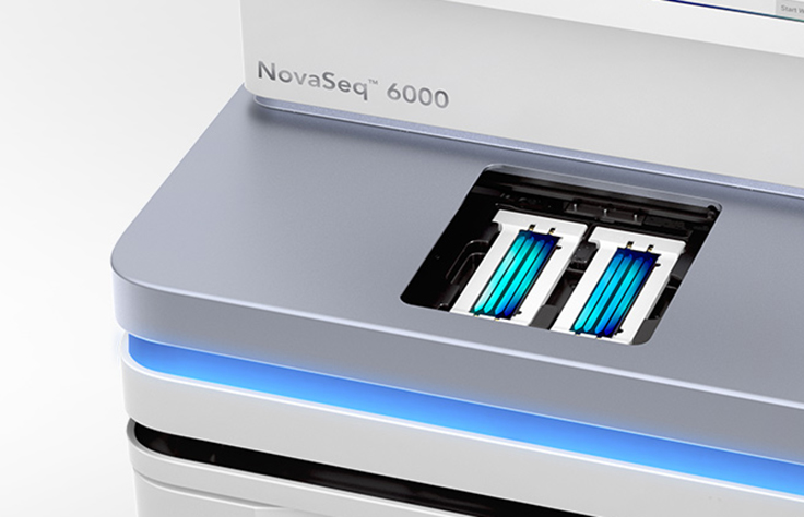 Human WGS on the NovaSeq 6000 System