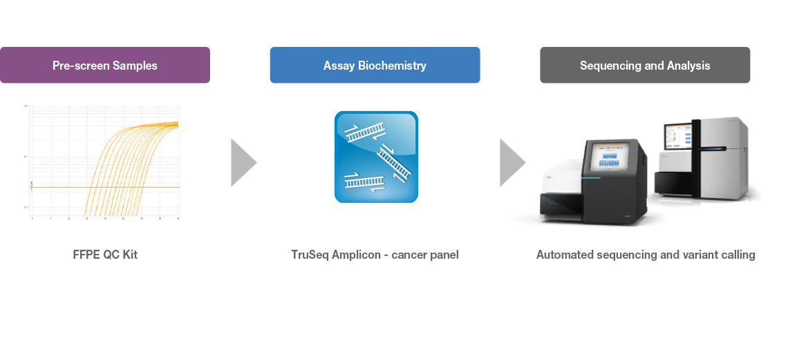 TruSeq Amplicon Cancer Panel workflow image